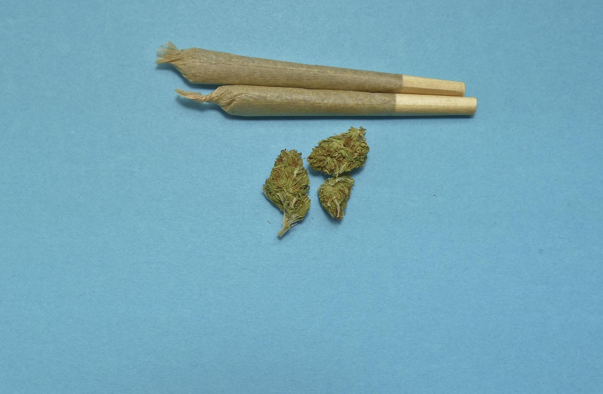 rolled up marijuana